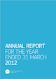 annual report icon
