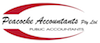 Peacocke Accountants Pty Ltd logo