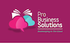 Pro Business Solutions logo