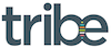Tribe Strategic Accountants logo